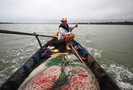 Từng đàn cá đối từ biển ngược vào cửa sông An Hòa