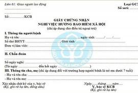 Hướng dẫn đăng ký cấp giấy chứng nhận nghỉ việc hưởng BHXH