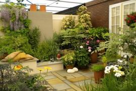 Những thiết kế vườn trên sân thượng đẹp mát mắt