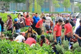 DKRA Việt Nam đồng hành cùng Quỹ Ban công Xanh