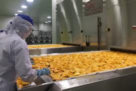 Sức hút của nông nghiệp Việt (*): Đầu tư lớn cho chế biến sâu