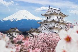 Khám phá du lịch xanh Nhật Bản