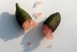 Miền Tây xuất hiện quả chanh tí hon chứa cả ngàn hạt trứng cá long lanh