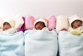 Ngắm 3 bé gái sinh 3 bụ bẫm tại Cần Thơ