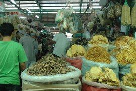 Măng khô, tươi: Đầy chất độc