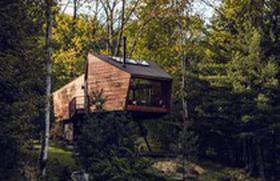 Nhà gỗ giữa rừng già thơ mộng ở Mỹ có gì đặc biệt?