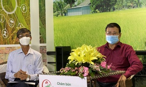 Chuyển giao kỹ thuật canh tác cho nông dân trồng lúa vùng ĐBSCL qua tư vấn trực tuyến