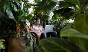 Văn phòng 'khác người' của những công ty sáng tạo nhất thế giới