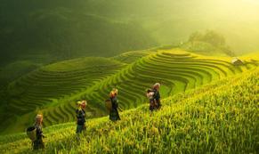Vịnh Hạ Long, Mù Cang Chải là những địa điểm có cảnh đẹp nhất Trái đất