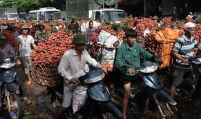 Bắc Giang chuyện lạ nửa thế kỷ: Chợ họp đến 10h đêm, thu hơn 5.500 tỉ