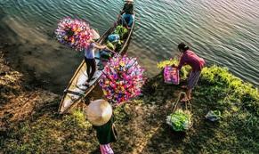 Tết ở làng hoa giấy Thanh Tiên