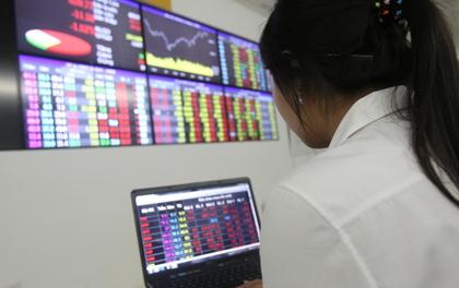 VN-Index vượt 800 điểm, chứng khoán trở lại thời hoàng kim?