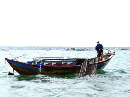 """Độc đáo nghề bẫy mực """"làm chơi ăn thiệt"""" trên vịnh Cam Ranh"""