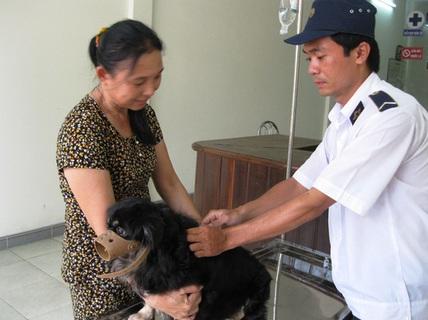 Nuôi chó phải báo chính quyền để loại trừ chó dại