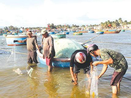 Mê mẩn xem bắt cá đối ở La Gàn