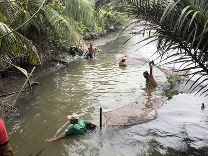 Về Đa Phước, xem người dân thu hoạch cá bên khu liên hợp