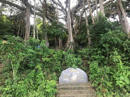 """Những vụ """"mất tích"""" bí ẩn trên bán đảo Sơn Trà"""