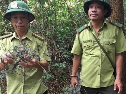 """Kinh hãi dày đặc hơn 300 bẫy """"tận diệt"""" thú rừng trên núi"""