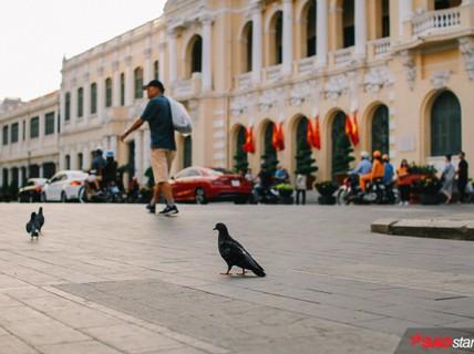 Không ồn ào vội vã, Sài Gòn - Hà Nội được trả lại vẻ yên bình trong ngày mùng 1 Tết