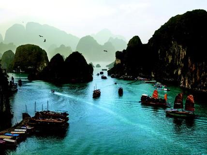 Đẹp quá Việt Nam!