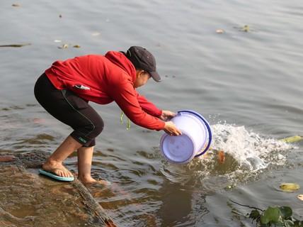 """Cá chép đưa ông Táo bị """"xử đẹp"""" khi vừa đến sông Sài Gòn"""