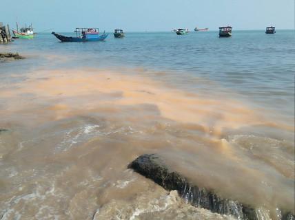 """Vết nước """"lạ"""" ở biển Quảng Bình là do xác vi sinh vật phân hủy"""