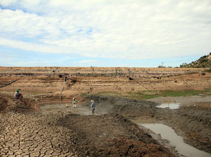 Ninh Thuận khô khốc