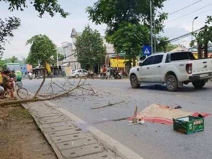 Bị cành cây rơi trúng xe máy, chồng tử vong, vợ bị thương