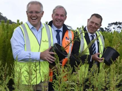 Tham vọng trồng 1 tỉ cây của Úc