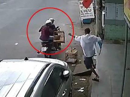 Trộm chim chào mào, gã đàn ông bị truy tố