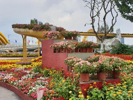 Cầu Vàng rực rỡ tại đường hoa Đà Nẵng