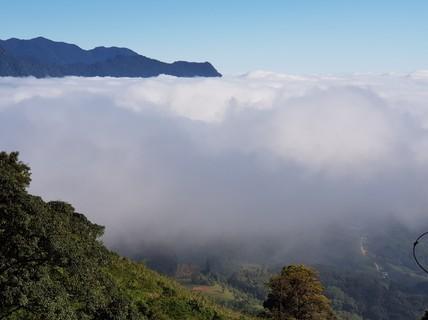 Quảng Nam có điểm du lịch sâm Ngọc Linh độc đáo, hoàn toàn miễn phí