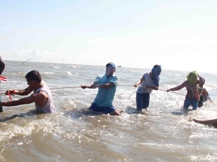 Khu lấn biển Cần Giờ mở rộng gần 5 lần