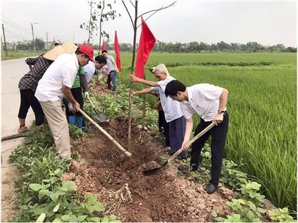 Hà Nội: Tạo mảng xanh cho vùng nông thôn mới