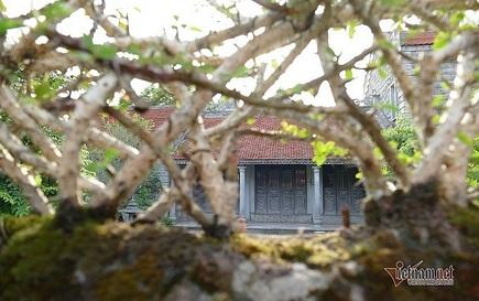 Có gì trong ngôi nhà bằng đá ở Ninh Vân mà nhiều người mê đắm?