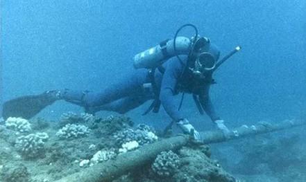 Sắp sửa chữa cáp AAG, internet từ TP HCM đi quốc tế bị ảnh hưởng