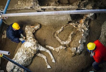 """Bí ẩn ngựa đá từng có sự sống trong """"hầm mộ"""" 2.000 năm"""