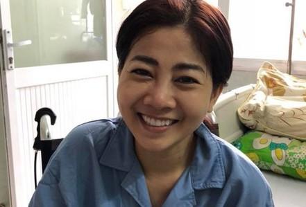Đàm Vĩnh Hưng, Lệ Quyên tổ chức đêm nhạc hỗ trợ Mai Phương