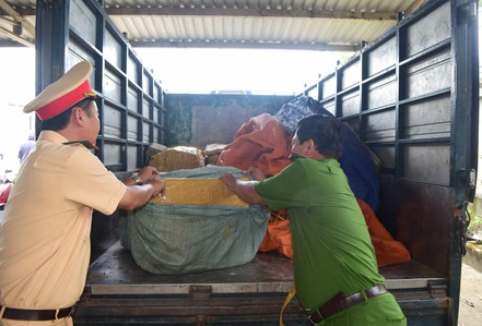 Phát hiện 840 kg sụn gà không rõ nguồn gốc