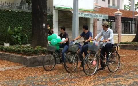 """""""Vũ điệu"""" chò nâu quyến rũ phố phường Sài Gòn"""
