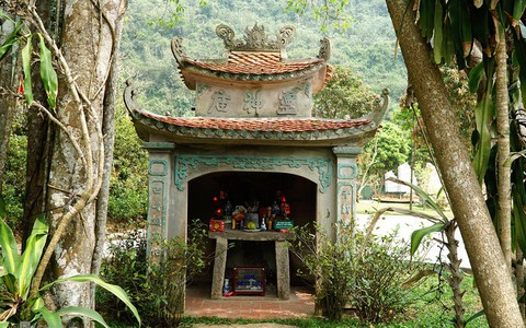 Cây đa ngàn năm 'biết đi' quanh đền cổ ở Ninh Bình
