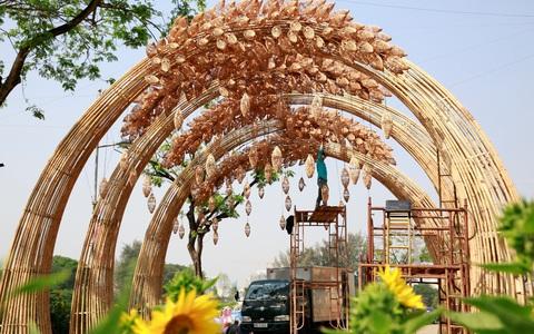 6 bông lúa siêu to tại Đường Xuân Phú Mỹ Hưng