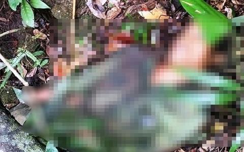 Rủ nhau đi săn khỉ, 1 người bị trúng 13 phát đạn tử vong