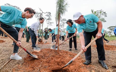 """Hành trình""""Một triệu cây xanh, thêm cây thêm sự sống"""" đến với Khu di tích lịch sử K9 Đá Chông – Ba Vì"""