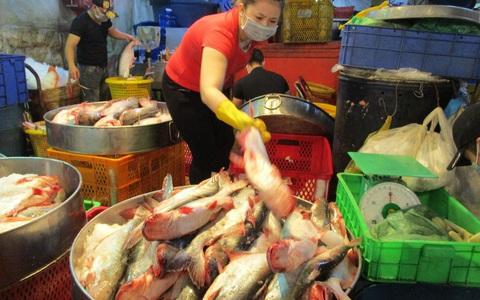 """Việt Nam quan ngại vì Brazil ra quy định """"làm khó"""" cá tra, tôm"""