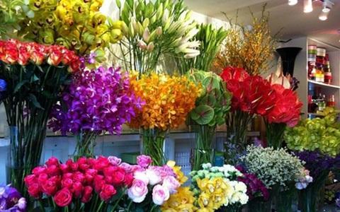 Học bí kíp giữ hoa tươi lâu trong ngày Tết