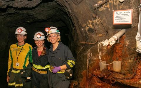 """Sinh vật """"như ngoài hành tinh"""" sống khỏe trong mỏ vàng 1,5 km dưới lòng đất"""