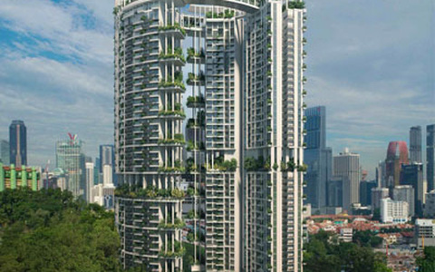 """Nhìn ra thế giới: Singapore phát triển """"khu vườn thẳng đứng"""""""