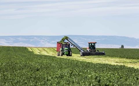 Nông trại hữu cơ làm nên sản phẩm Amway chất lượng