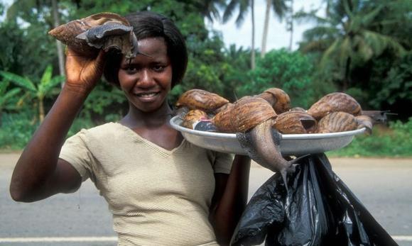 Ốc sên khổng lồ - đặc sản ăn vặt ở châu Phi